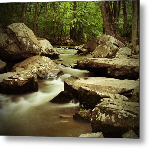 Creek At St. Peters Metal Print
