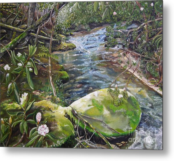 Creek -  Beyond The Rock - Mountaintown Creek  Metal Print