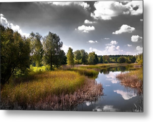 Creek In The Garden Metal Print