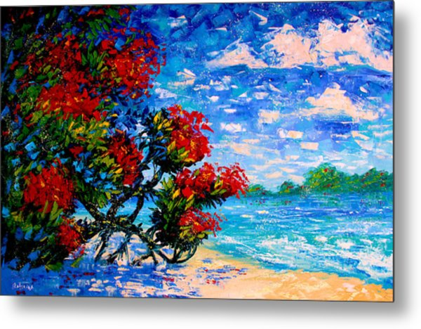 Crimson Bloom Red Flower Tree At The Beach Blue Sky Landscape Metal Print
