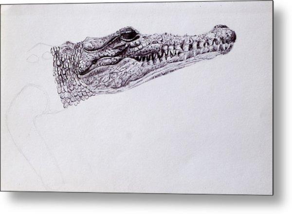 Croc Sketch Metal Print
