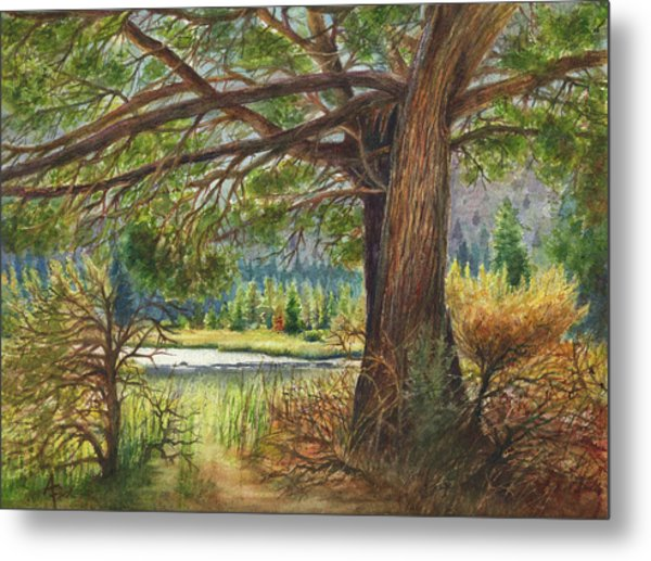 Crooked River Shade Metal Print