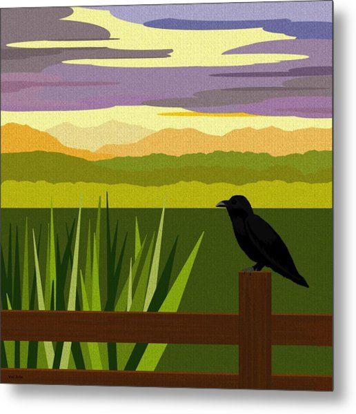 Crow In The Corn Field Metal Print