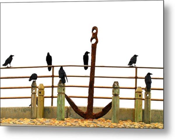 Crows At Anchor Metal Print
