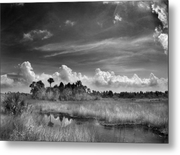 Cruickshank Trail Metal Print