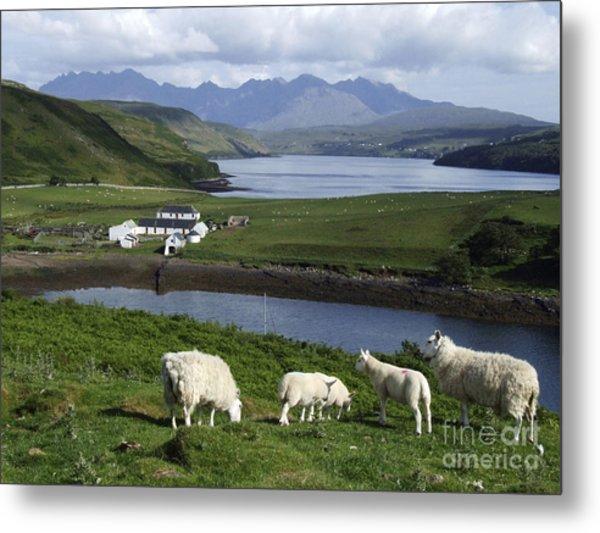 Cuillin Mountains - Isle Of Skye Metal Print