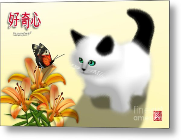 Curious Kitty And Butterfly Metal Print