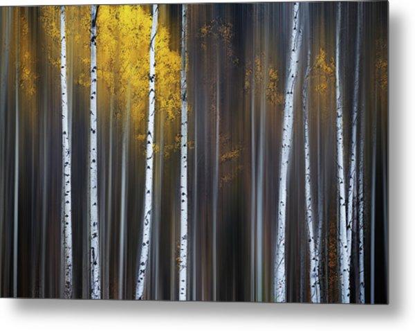 Curtain Of Fall Metal Print