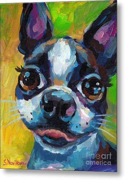 Cute Boston Terrier Puppy Metal Print