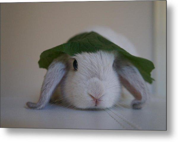 Cute Bunny Metal Print by Nikki  Wang