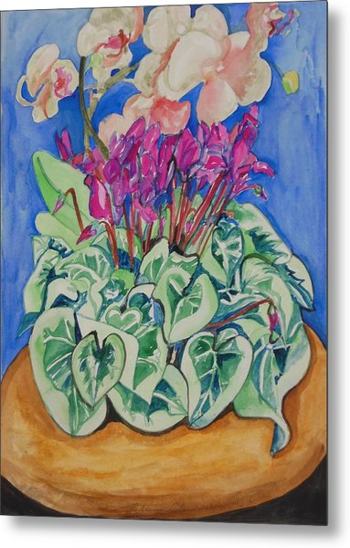 Cyclamen And Orchids In A Flower Pot Metal Print