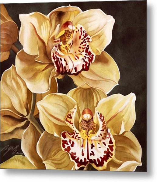 Cymbidium Orchids Metal Print by Alfred Ng