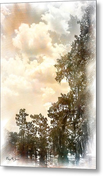 Swamp - Louisiana - Cypress Heaven Metal Print by Barry Jones