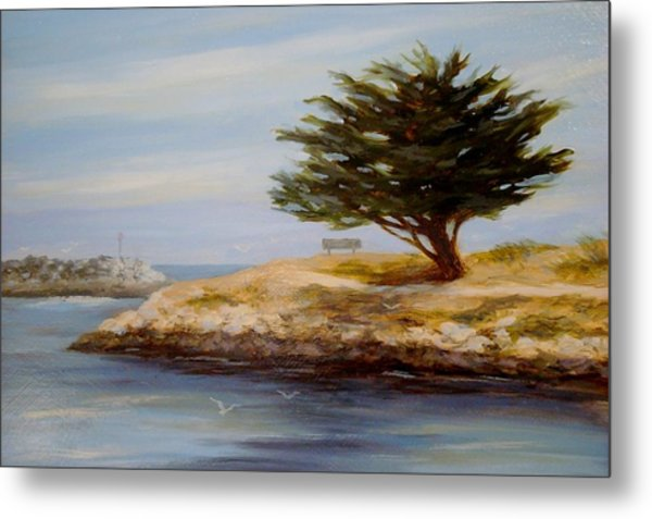 Cypress Tree At Marina Park #2 Metal Print by Tina Obrien