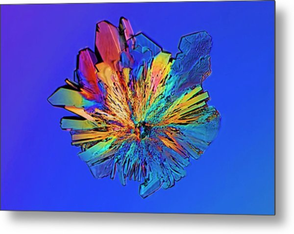 Cysteine Crystal Metal Print by Antonio Romero