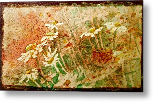 Daisies In The Wind Metal Print