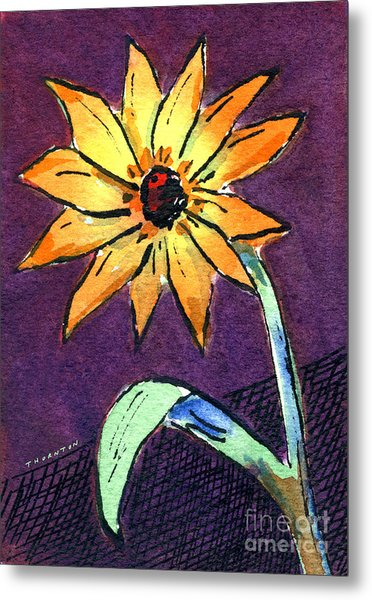 Daisy On Dark Background Metal Print
