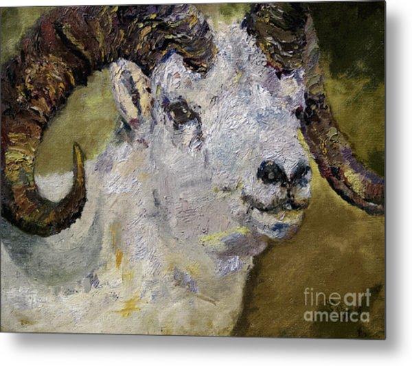 Dall Sheep Ram Wildlife Portrait Metal Print