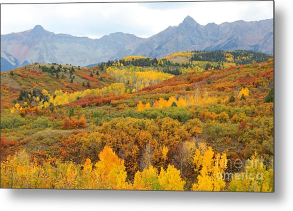 Metal Print featuring the photograph Dallas Divide In The Fall by Kate Avery