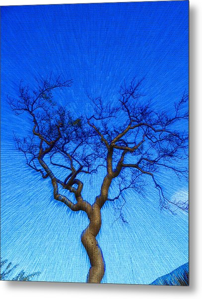 Dance Of The Dawn Metal Print