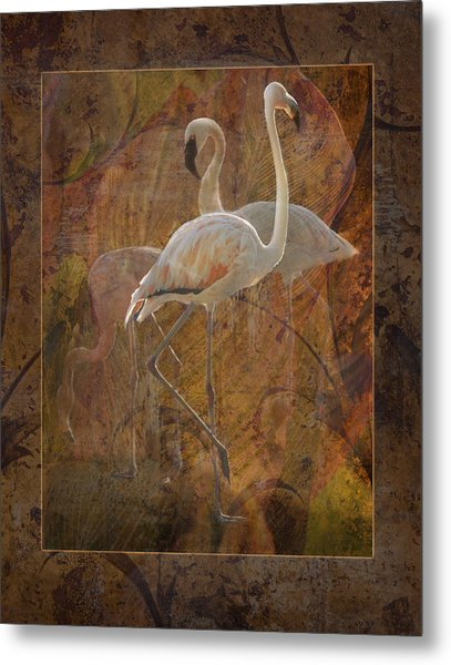 Dance Of The Flamingos Metal Print