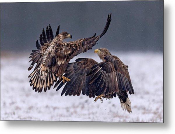 Dancing In The Snow Metal Print by Xavier Ortega