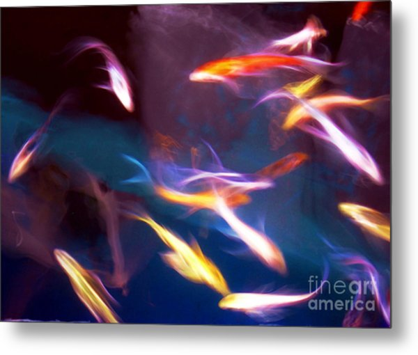 Dancing With Koi Metal Print