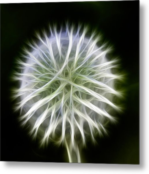 Metal Print featuring the photograph Dandelion Abstract by Omaste Witkowski