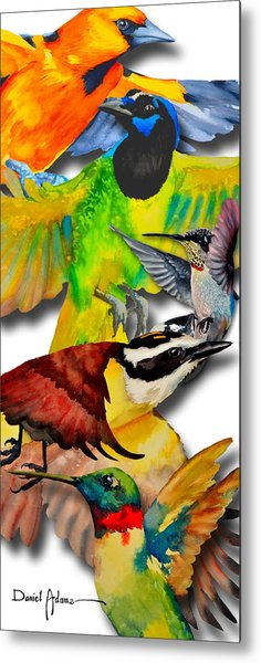 Da131 Multi-birds By Daniel Adams Metal Print