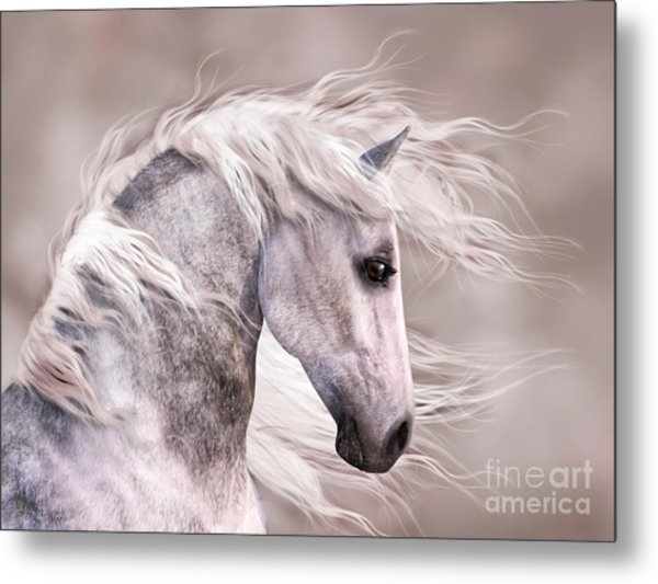 Dappled Grey Horse Head Profile Metal Print