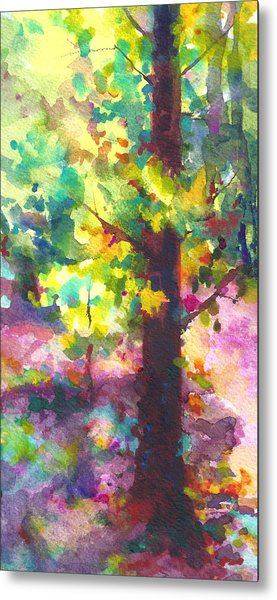 Dappled - Light Through Tree Canopy Metal Print