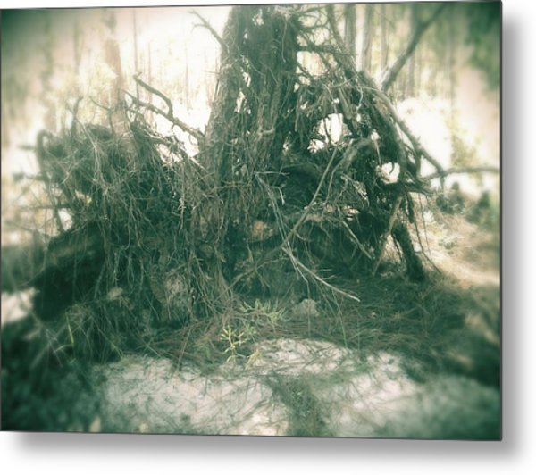 Dark Metal Print by Chasity Johnson