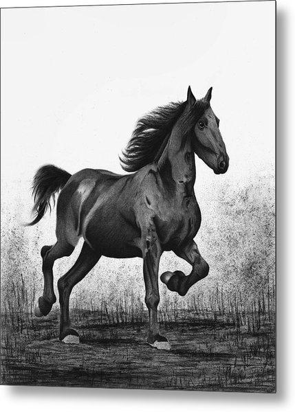 Dark Horse Metal Print by Sesh Artwork