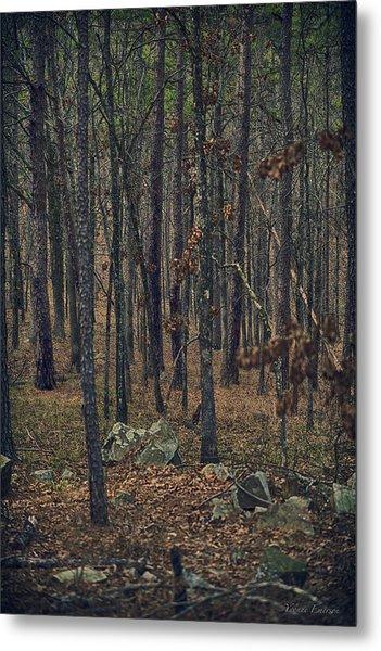Dark Woods Metal Print