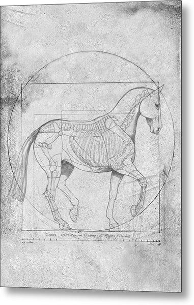 Da Vinci Horse Piaffe Grayscale Metal Print