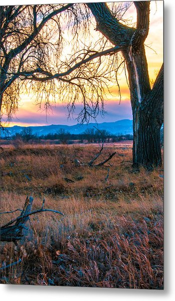 Setting Sun At Rocky Mountain Arsenal Metal Print