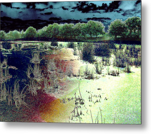 Dawn Breaking On South Florida Marshland Metal Print