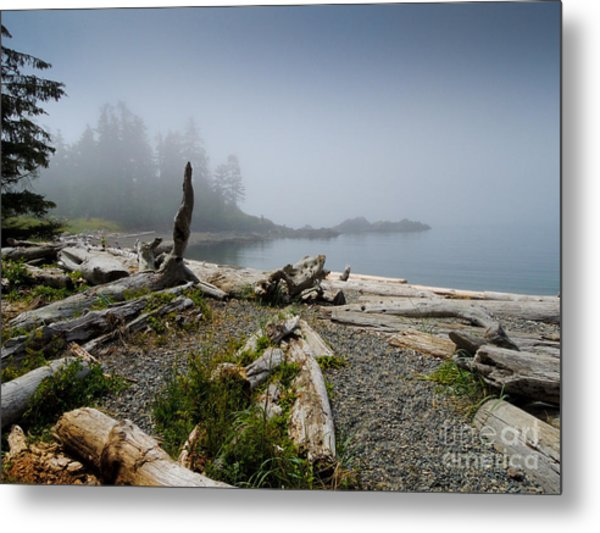 Dawn Cove Metal Print