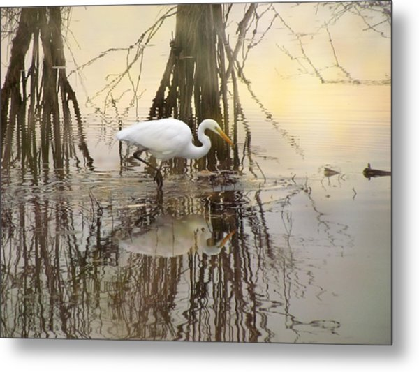 Dawn Hunter Metal Print