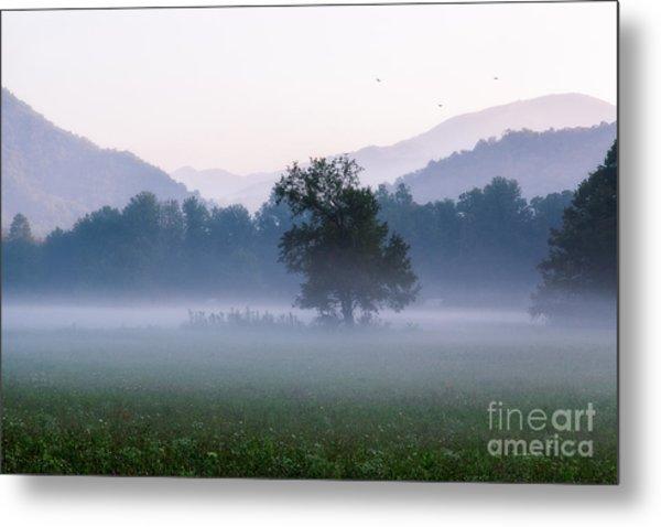 Dawn In The Mountains Metal Print