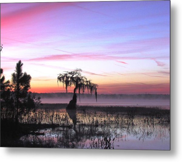 Daybreak Metal Print by Will Boutin Photos