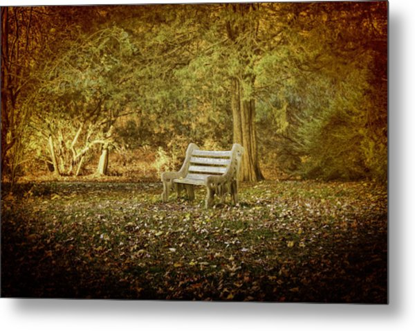 Daydreamer's Bench Metal Print