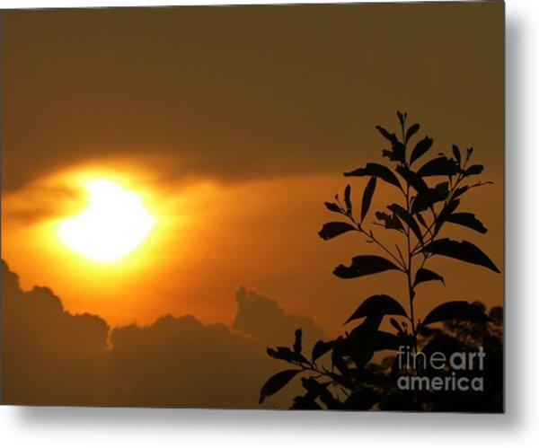 Day's Done My Sun Metal Print