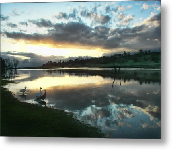 Days End At Horseshoe Lake  Metal Print