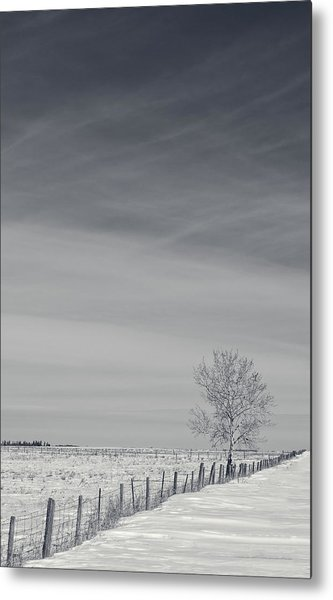 Days Turn Into Months Metal Print