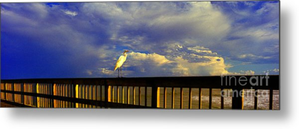 Daytona Beach Rail Bird Sun Glow Pier  Metal Print