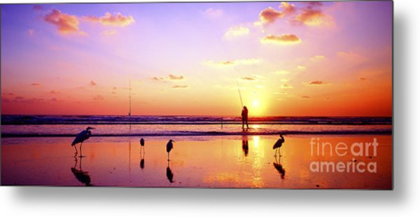 Daytona Beach Fl Surf Fishing And Birds Metal Print