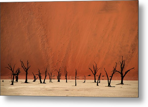 Deadvlei Metal Print by Hans-wolfgang Hawerkamp