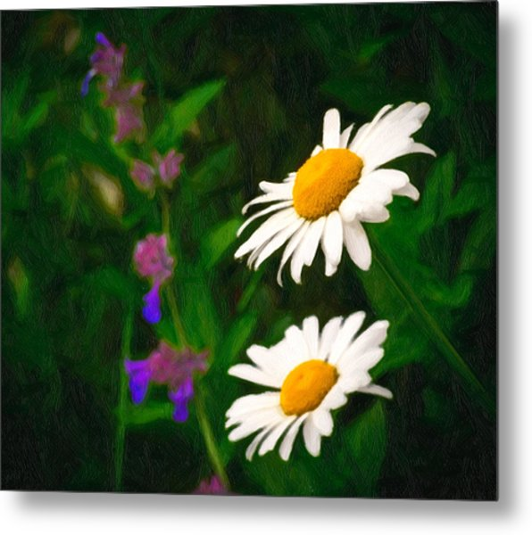 Metal Print featuring the photograph Dear Daisy by Garvin Hunter