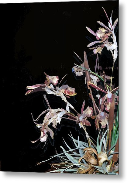 Death Of An Orchid  Metal Print